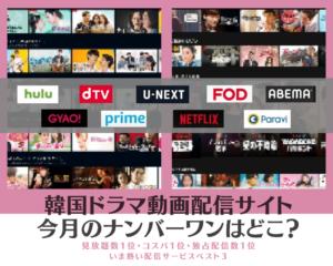韓国ドラマ動画配信サイト